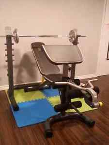 Gold's gym weight bench