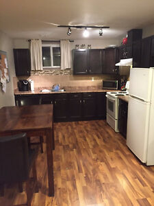 Beautiful 1 BRM Basement Suite 4 Rent-HUGE WINDOWS -Pet Friendly