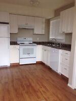 Bright open spacious lower duplex available August 15.