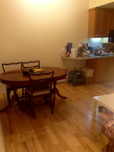 Roommate Wanted! 4 1/2 Apartment in McGill Ghetto