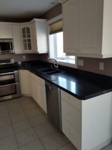Complete Kitchen For Sale Including Stainless Steel Appliances