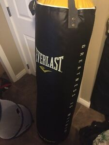 Heavy Bag and stand for sale