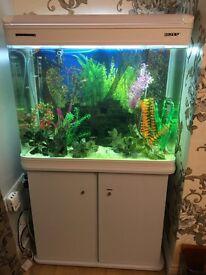Full Set up Fish Tank & accesssories