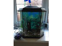 30 Litre Fish Tank (Full Set Up).