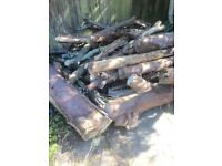 FREE Tree Logs for Open Fire or Wood Burner
