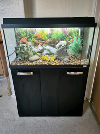Fish Tank And Stand Full Set Up