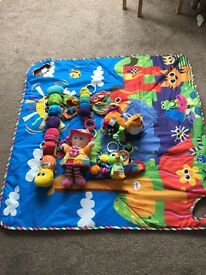 Lamaze toys and carry mat