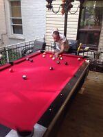 Table de billard / pool