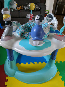Polar Playground Bouncing Activity Center in mint condition