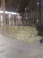 Hay & straw bales for sale
