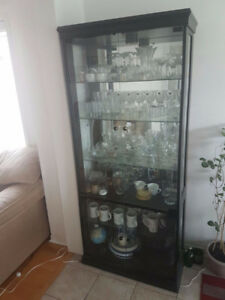 BEAUTIFUL CONTEMPORARY GLASS SHOWCASE - ONLY $120