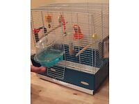 Canary with the cage
