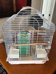 Bird cage + Extras / Cage d'oiseau + accessoires