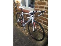 Specialized Allez Sport 2011 Road Bike