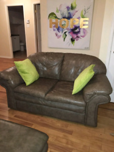 2 leather couches ( loveseats)