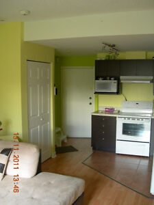 Furnished apartment in Laval close to metro