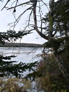 15 acres, 700ft lakefront on Mill Lake, Moser River