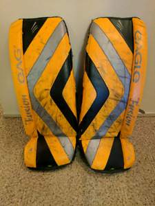 Eagle Fusion 34inch hockey pads -$100