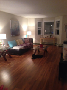 Bright, Affordable & Spacious 2BDRM Apart. for rent for November