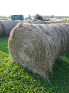2017 July Twine wrapped Hay