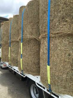 HAY 4X4 ROUNDS RHODES GRASS (EXCELLENT HORSE OR CATTLE FEED)