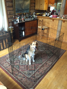 Black Exercise Pen $100