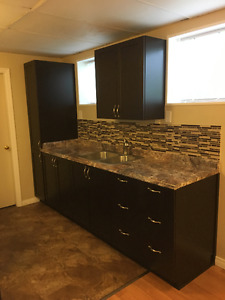 Nice and bright one bedroom basement suite for rent