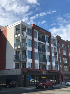 Brand New DOWNTOWN - One Bed Condo