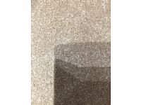 Carnival Parchment New Carpet Ab 3.40m x 4.00m Free Local Delivery