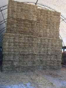 Small sqaure straw for erosion control London Ontario image 1