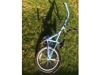 Bike tag a long boys girls