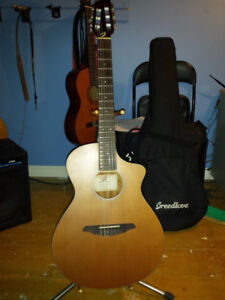 Breedlove Passport N250 Nylon String Acoustic-Electric Guitar
