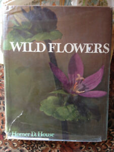Wild Flowers by Homer D. House