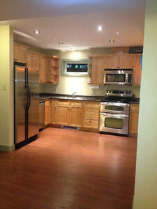 Beautiful basement suite for rent