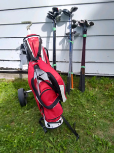 Golf Bag + Carrier + Pick a set of clubs.