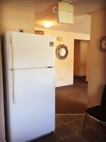 a well furnished spacious 2 bedroom suite for rent