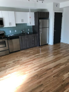 DOWNTOWN Halifax, newly renovated apartment for rent