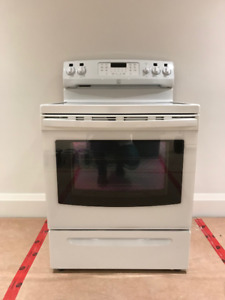 """Induction Stove (30"""") with Convection Oven"""