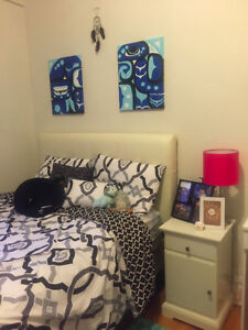 Cheap Summer Apartment Sublet in the McGill Ghetto (May-August)