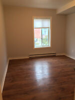 Beautiful fully renovated (2) bedroom Next to metro