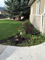 Garden weeding and tending