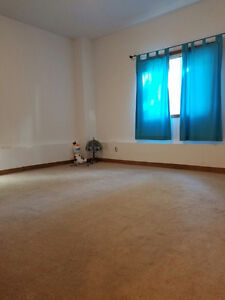 Available ALL INCLUSIVE 1 bedroom lower unit Cambridge Kitchener Area image 3