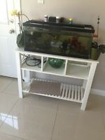 Fish tank and Fish and fish stand LED light