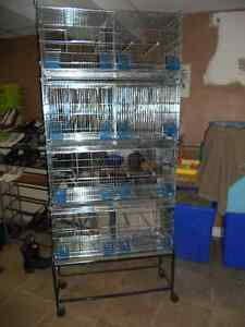 Small bird cage system