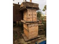 600 x 90 x 38 lengths of timber firewood kindling garden planters