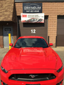AUTO GLASS,TINT,PAINT PROTECTION FILM