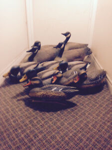 Assortment of waterfowl hunting accessories