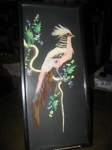 EXQUISITE FEATHERED BIRD WALL HANGING under GLASS