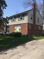 6 Mayfair Drive - Lower/Back - Great Location! Util. Inc.