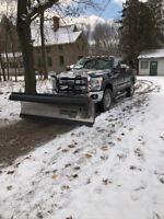 Snow ploughing ... driveways, walkways, parking lots